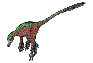 Troodon_formosus_(feathers)2