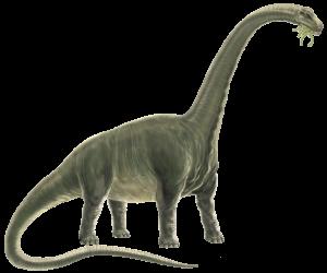 Titanosaur Pic Small