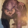 the owlbear art from the Monster Manual